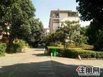 观青山大自然花园歩梯3楼霸气楼中楼送露台
