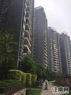 凤岭北财富国际广场4房的楼中楼送100平的大露台