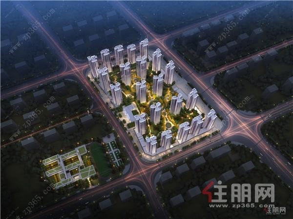 金科城楼栋规划图