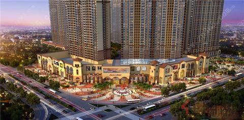 2017年12月17日江南区看房团:振宁星光广场-天健西班牙小镇
