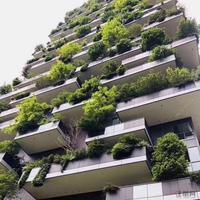 赠送超大阳台,买135m²赠送50m²