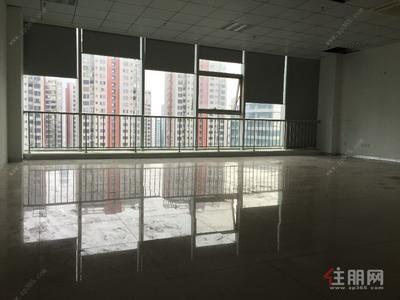 凤岭北-南宁东站旁德利国际A2座写字楼72平米租60/平米