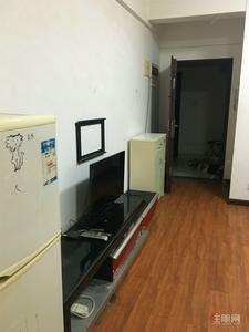 七星桃源-西湖新天地 附近地铁口 市中心 精装一房一厅 干净整洁舒适