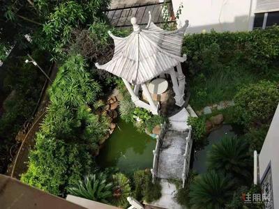新竹路-林业新村西区 豪华别墅出租自带KTV花园,会所居家都适宜