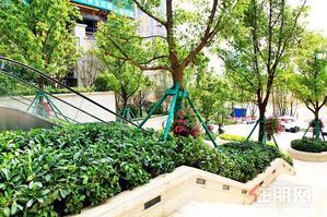 仙葫菜市旁邊,30平米帶陽臺獨立衛生間跟獨立陽臺,自租,中介勿擾,看房提前聯系