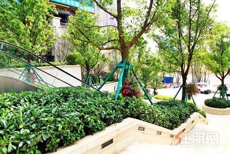 仙葫新区-仙葫菜市旁边,30平米带阳台独立卫生间跟独立阳台,自租,中介勿扰,看房提前联系