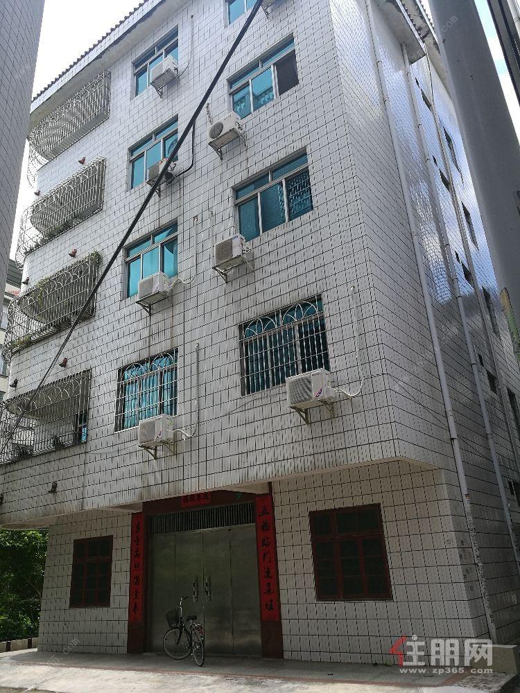 独栋自建楼房,每层一套4房2厅2房2卫带大阳台