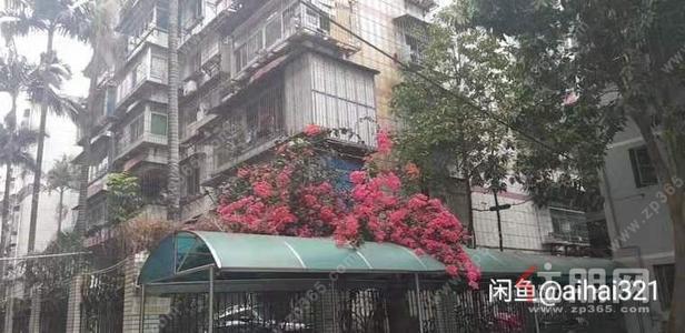 新竹路-新竹路单位小区女生合租房