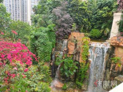 凤岭北-青秀美泉1612两房一厅 小区环境优美 房屋配置齐全