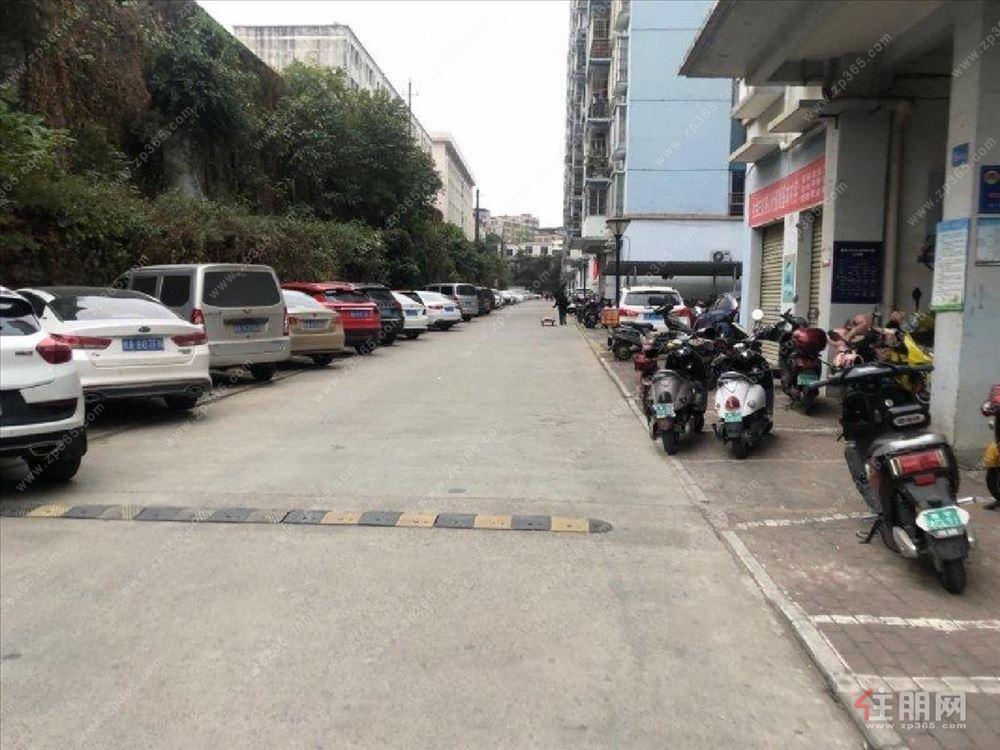 科园桂锦苑3房空房出租修价格便宜看房随时