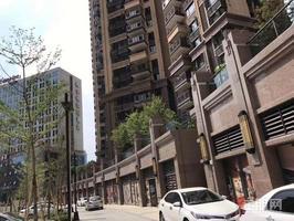 万达茂旁!4号线地铁+新坡湖公园!小投资高收益!月供1400左右!小区配套齐全!
