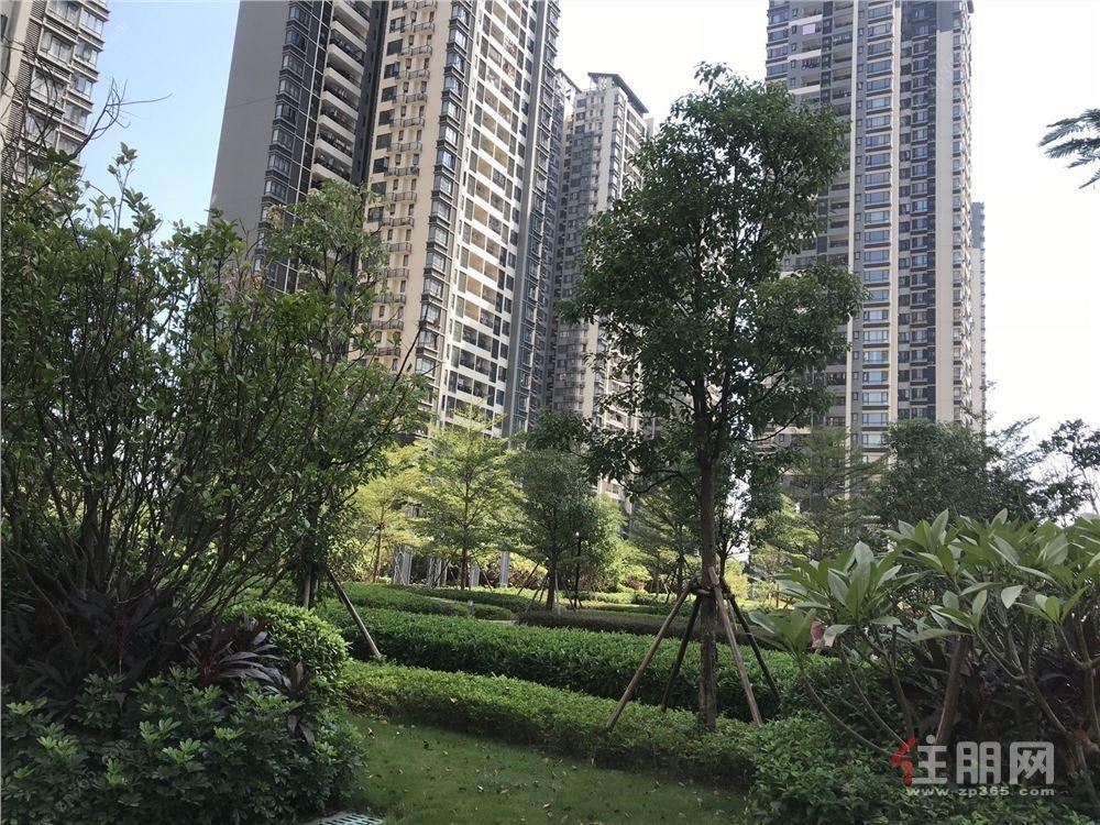 五象新区 地铁3号线  南宁三中 精装3房 万科魅力之城