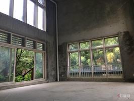 东盟商务区 独栋大别墅 少之又少 超大花园 配电梯 带车库