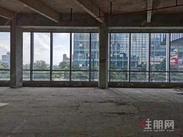 自贸区现铺三甲医院41米超宽展示面