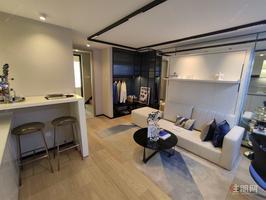 首付6万买两房,精装修,青年国际LOFT1房双公园近地铁