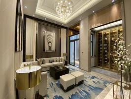 龙光江南院子独门独院的别墅160万,原价260万