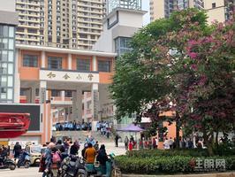 五象東+盛湖悅景臨街商鋪+學校正對面單價1.5萬+5米大開間