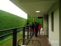 青秀区兴宁东,北投荷院141平5房 ,那考河旁,吾悦广场附近