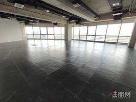 总部基地 现房5A甲写 即买即办证1000平 售价1.5万高区房源