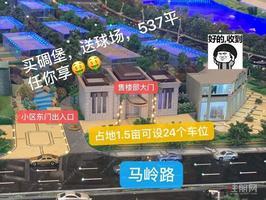 五象东江景+独栋独院+豪华装修售楼部出售+送门口537平花园用地