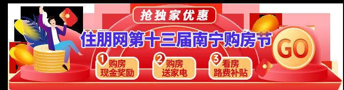 13届南宁购房节
