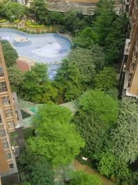 保利童心缘140精装3房 朝南高楼层卖去年的价格 业主急卖