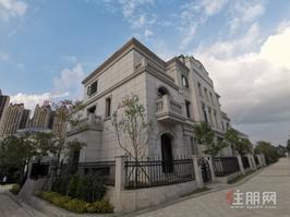 青秀东站旁 稀缺温泉别墅14中學区送车位