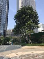 总部基地地铁口50平做两房的loft公寓