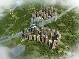 凤岭北唯一精装大平层200平 滨湖路小学