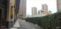 凤岭北,高端住宅区,仅2字头