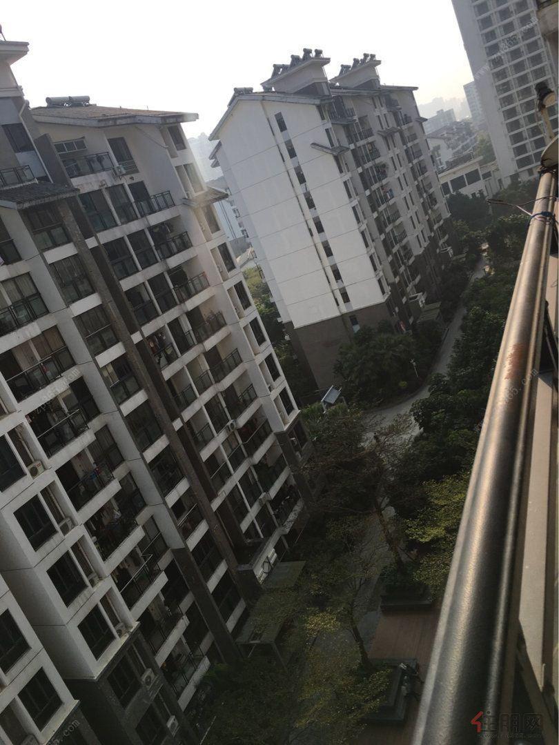 重庆路园林小区中安止泊园3房2厅电梯9楼朝南