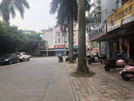 重庆路园林小区中安止泊园3房2厅电梯9楼精装修