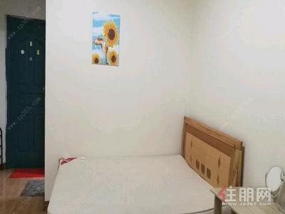 新民路-青秀区东葛路华星时代广场1房48平米1650元/月