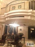 枫林蓝岸集会所与办公于一身的通用别墅