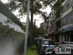 急售城中区雅儒路小高岭(福柳新都旁)独栋四层半私人房162平