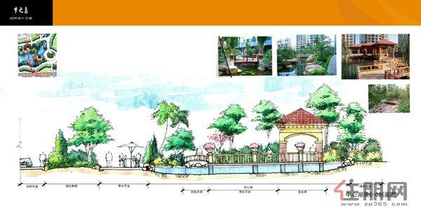 梦之岛花园中心湖景剖面图