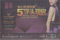 花样年华广告欣赏|2011.02.24广告欣赏
