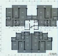 2#楼层面图