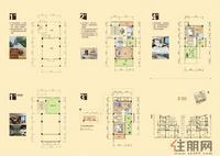 容州商业城-B户型(约250平方)