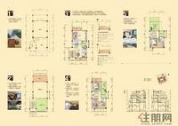 容州商业城-A户型(约300平方 )
