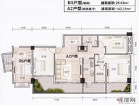 伟业大厦B5户型