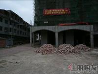右江河谷江与城实景图|2011.03.03项目现场