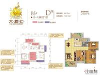 B5#D户型2+1房2厅1卫