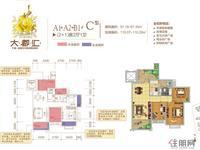A1/A2/B1#C户型2+1房2厅1卫
