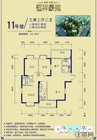 11号楼 3房 户型单张