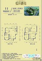 11号楼 复式 5房 户型单张