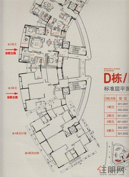 骋望怡�Z湾骋望D/E栋平面图0室0厅0卫0.00�O