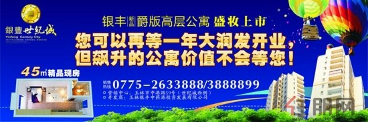 银丰爵版公寓上市广告