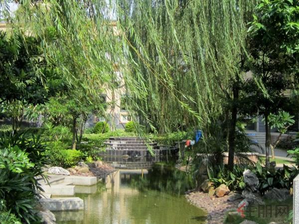 小区实景图 广汇 东湖城 园林景观设计与东湖水景完美融合