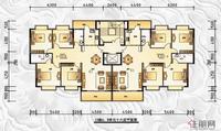 13#楼AB单元十六层平面图